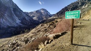 Photograph taken along Tioga Pass Road on January 12, 2015 illustrating the remarkable lack of snow in the High Sierra this winter. Photo courtesy of Bartshé Miller.